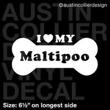 6 5 Maltipoo Vinyl Decal Car Window Laptop Sticker Dog Breed Rescue Ebay