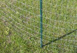 Knock In Posts U Channel Fence Black Green Posts Academy Fence Company