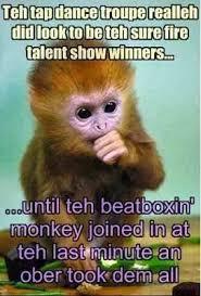morning es funny monkey esgram