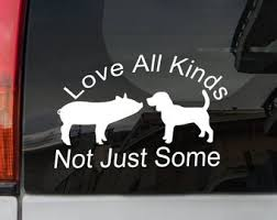 Animal Rights Decal Etsy