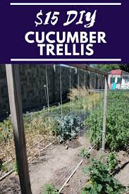 Simple Cucumber Trellis For Only 15 Our Stoney Acres