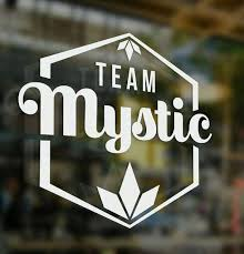Team Mystic Vinyl Decal Original Pre Order Pokemon Go Team Mystic Vinyl Decals Mystic