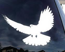 Dove Bird Flying Beautiful Nature Decal Sticker Car
