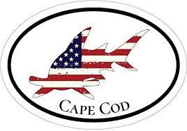 Wickedgoodz Oval Vinyl American Flag Hammerhead Shark Vinyl Decal Cape Cod Bumper Sticker Perfect Massachusetts Vacation Gift Wickedgoodz