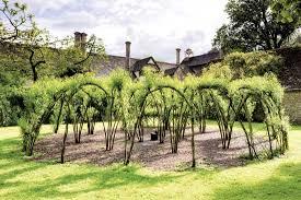 Living Willow Sculptures And Fences Diy Heirloom Gardener