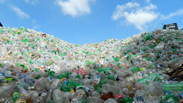 Super-Enzyme Eats Plastic Bottles Six Times Faster Now