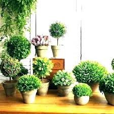 fake plants plastic plants for