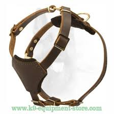 small leather puppy harness dog