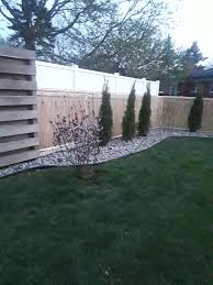 Chain Link Fence Makeover Chain Link Fence Landscape Plants