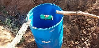 bucket mouse traps five gallon ideas