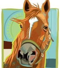 man o war horse racing thoroughbreds
