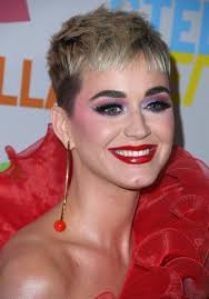 katy perry no makeup no problem