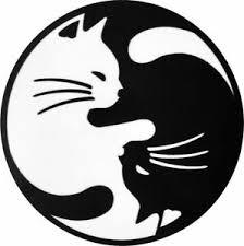 Ota Sticker Yin Yang Cat Chinese Kung Fu Decal Tattoo Biker Motorcycle Helmet Ebay