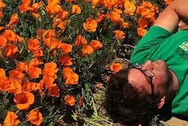 Dustin Bell | Interdisciplinary Arts