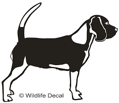 Pin On Dog Decals