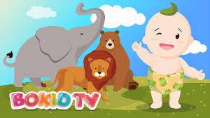 Learn Animals - Elephant, Lion, Bear | Bé Học Tiếng Anh | Nhạc Thiếu Nhi Tiếng  Anh Vui Nhộn BoKidTV - YouTube