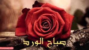 اجمل صور صباح الورد جديدة Hd 2020