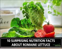nutrition facts about romaine lettuce