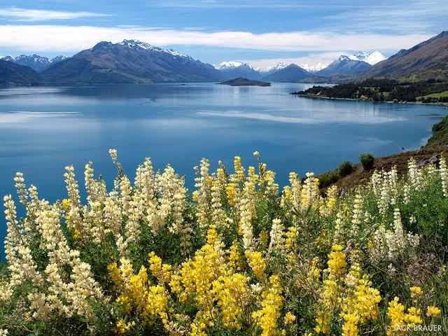 "Resultado de imagen de Lake Wakatipu"""