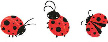 My Wonderful Walls Large Ladybug Wall Decal Set Set Of 3 Wayfair