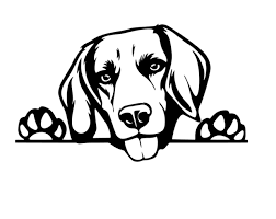 Beagle Car Decal Sticker Beagle Dog Sticker Beagle Mom Beagle Love Beagle Mum Beagle Gifts Beagle Decor Vinyl Window Ute Fun Dog Love In 2020 Beagle Dog Beagle Beagle Gifts