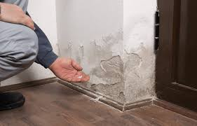 Tips on How to Repair Minor Water Damage in Your Property