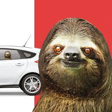 Amazon Com Thumbs Up Uk Sloth Left Ride Car Window Cling Automotive