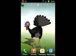 funny dancing turkey android live