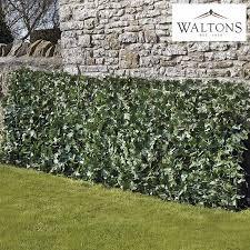 Waltons Artificial Ivy Fence Waltons