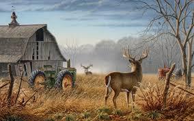 deer hunting wallpapers top free deer