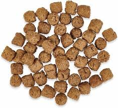 best dog food for diabetic dogs 2020