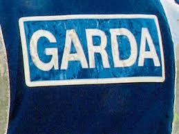 Pepper sprayed as abusive to gardaí - Leinster Express