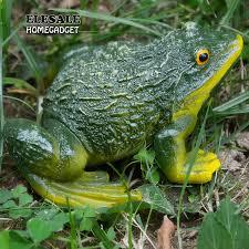 frog statue diy outdoor garden bonsai
