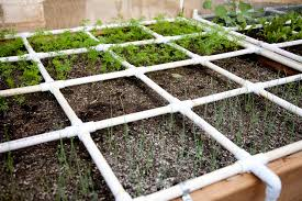 raised bed garden with watering system