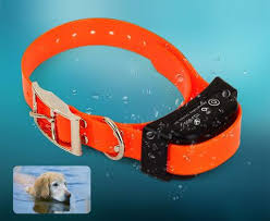 2 In 1 Electric Dog Fence Remote Dog Training Rechargeable Collar Dog Gear
