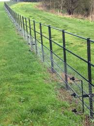 Estate Fencing Park Fencing With Rabbit Mesh And Electric Fence Wire Dog Fence Horse Fencing Electric Fence