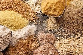 تغذیه با گندم مشکلات متابولیکی برای دام و طیور به همراه دارد ...