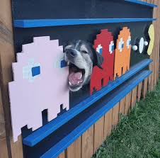 Dogs Who Like To Stick Their Heads Through Fence Holes Become Art