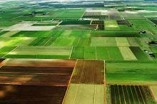 Землекористувачі та власники землі Луганщини сплатили понад 25 млн гривень
