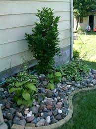 melanie siganos landscaping with
