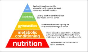 nutrition plan fuego fitness club