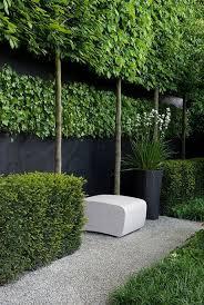 Stunning Privacy Fence Line Landscaping Ideas Pea Gravel Garden Gravel Garden Garden Design