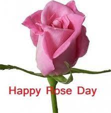 sad rose day quotes rose day sms sms com