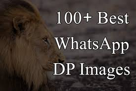 best whatsapp dp images profiles pics for
