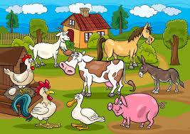30.03. Zwierzęta wiejskie - ::4lomza.pl:: Regionalny Portal
