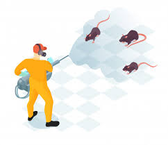 Free Vector | Worker of pest control service with professional equipment  during domestic disinfection from rodents isometric vector illustration