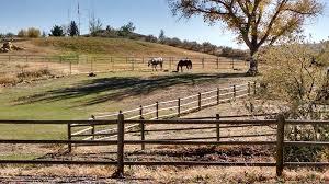 Home Rev Real Estate Cody Wyoming