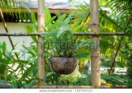 Outdoor Hanging Planter Stock Photo Edit Now 1337747117