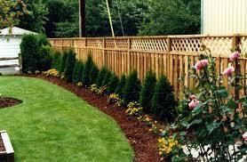 landscape along your fence line