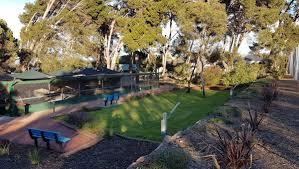 Ada Ryan Gardens looking good - Whyalla News - Whyalla news - NewsLocker